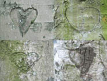 Parcours Singuliers